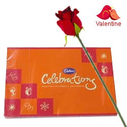 Assorted Cadburys Chocolates Celebration with One Velvet Red Rose