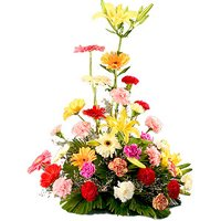 Wonderful Multi-Hued Flowers Arrangement