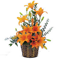 Pretty Basket of Orange Lilies