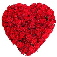 Magnificent Heart Shaped 150 Dutch Red Roses Arrangement of Love