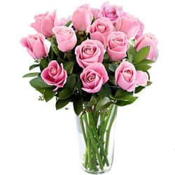 Lovely Pink Roses in Vase