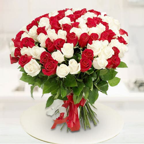Striking Shine Red  N  White Roses Premium Bouquet