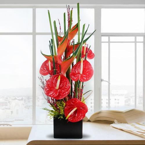 Exclusive Arrangement of Red Anthodium with BOP in Black Box