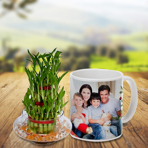 Wonderful 3 Tier Bamboo Plant with Personalized Coffee Mug