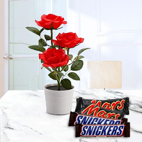 Delightful Gift of Red Rose Plant with Chocolates