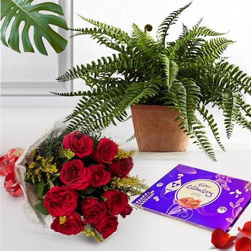 Gorgeous composition of Roses with Bostern Fern N Chocolates