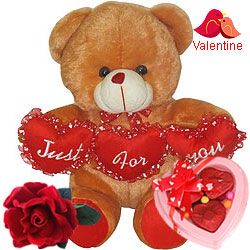 Just for You Teddy with Red Velvet Rose N Chocolate