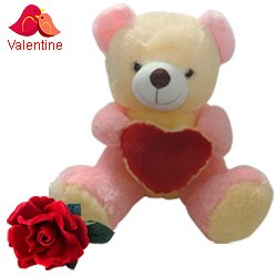Love Teddy With Heart (16 inches) with a Velvet Red Rose